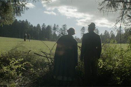 Venezia 71 – The Council of Birds (Zerrhumpelt Herz)