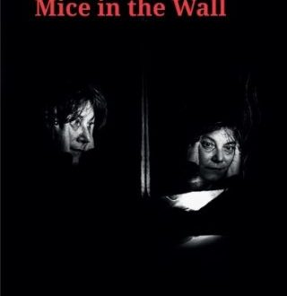 Mice in the wall (English edition)