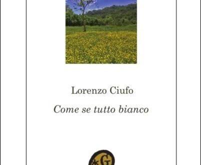Lorenzo Ciufo: Come se tutto bianco